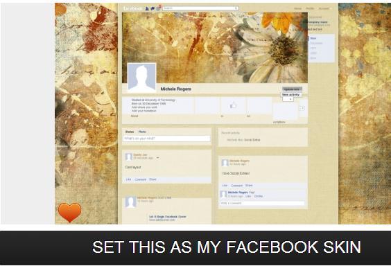 Facebook Skins